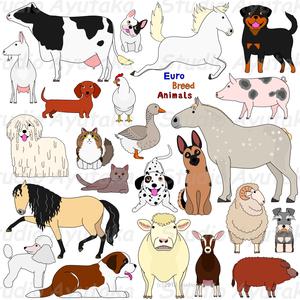 家畜たち/farm animals