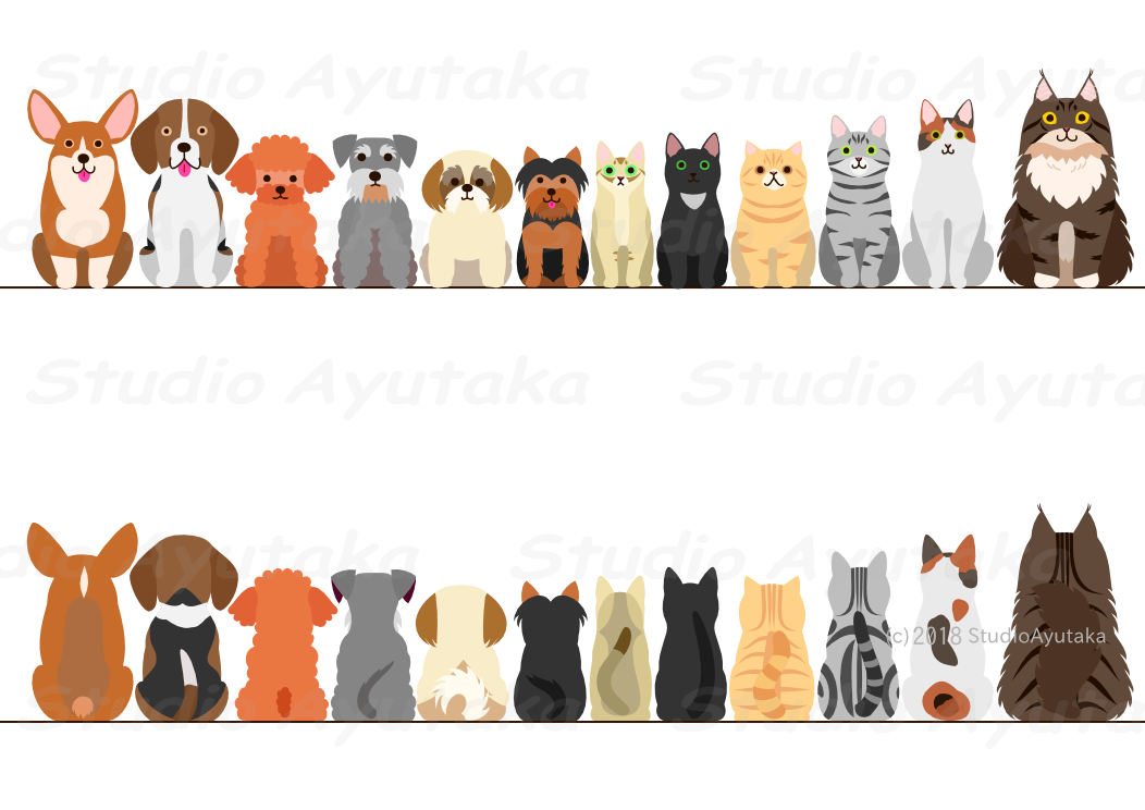 dogs and cats sitting border