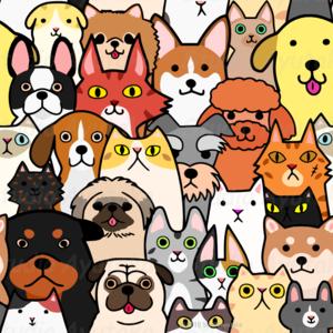 犬&猫/cats&dogs